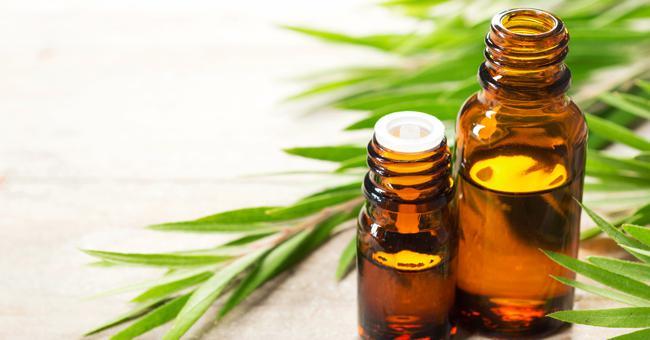olio esse - Olejek herbaciany - pochodzenie i właściwości